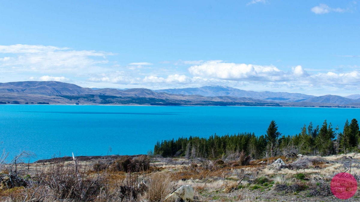 The jaw-dropping Lake Pukaki from Peter's Lookout