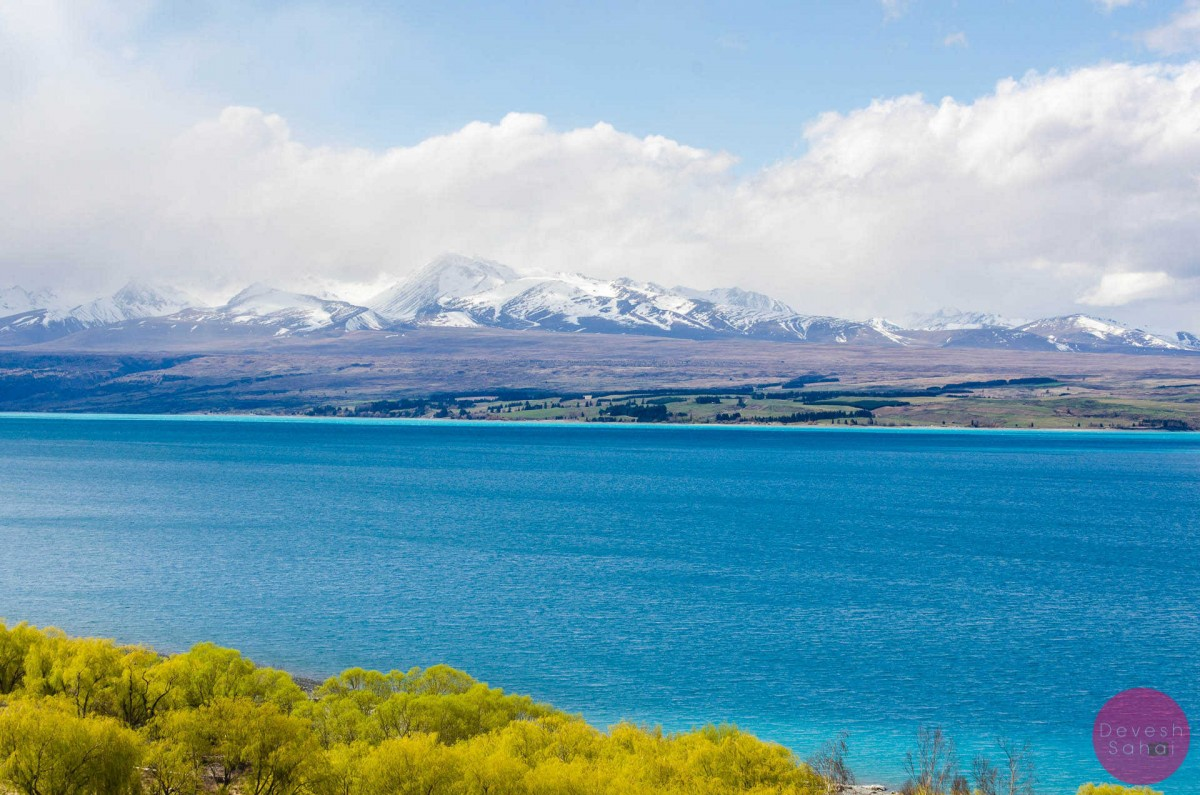 why is lake pukaki so blue