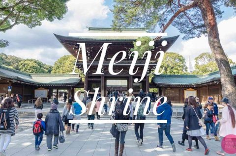 Meiji Shrine Blog