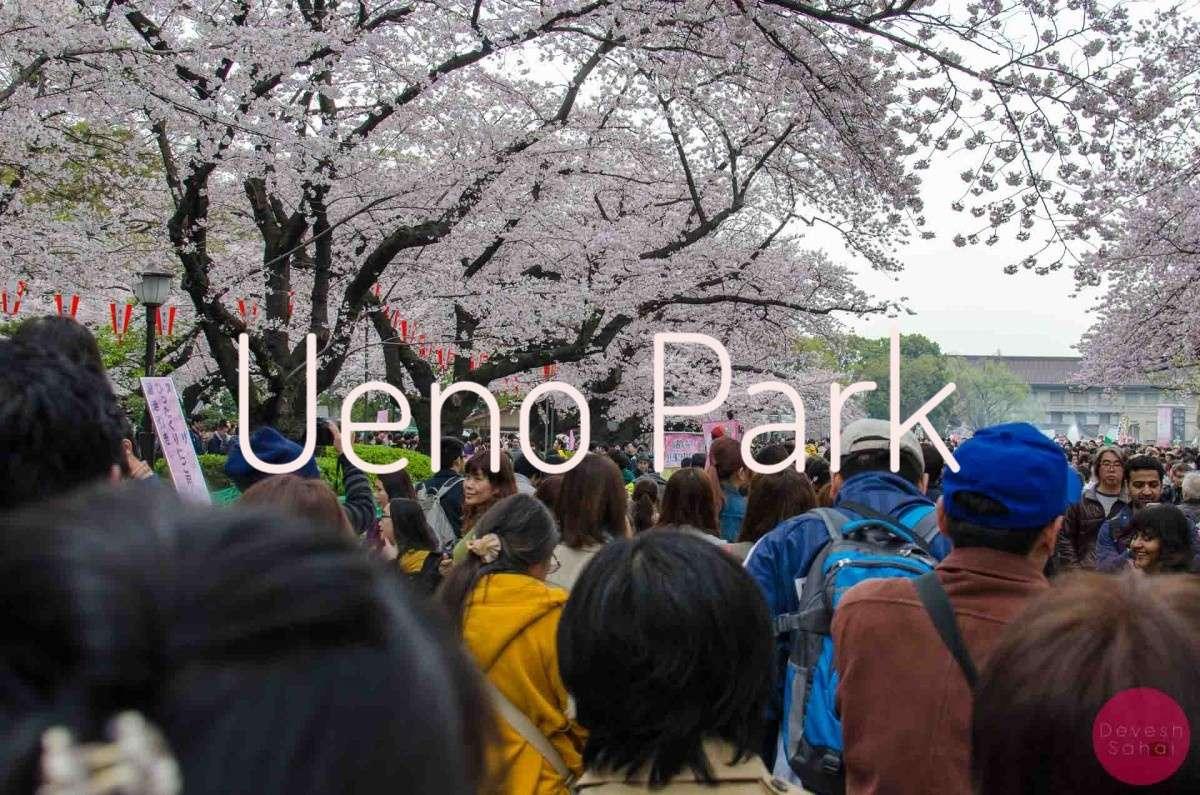 Ueno Park Tokyo Blog