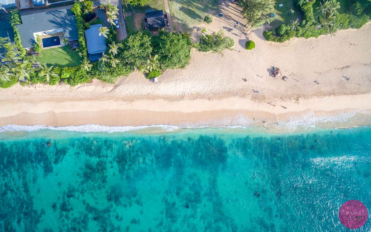 drone aerial photo of banzai pipeline beach hawaii