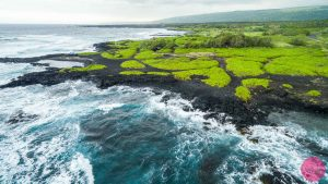 beautiful contrasts of green blue black colours on the punaluu black sand beach