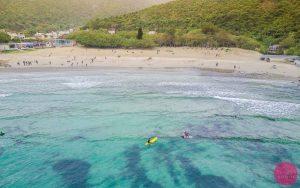big wave bay beach surfers