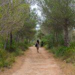 Camí de Cavalls hike Menorca