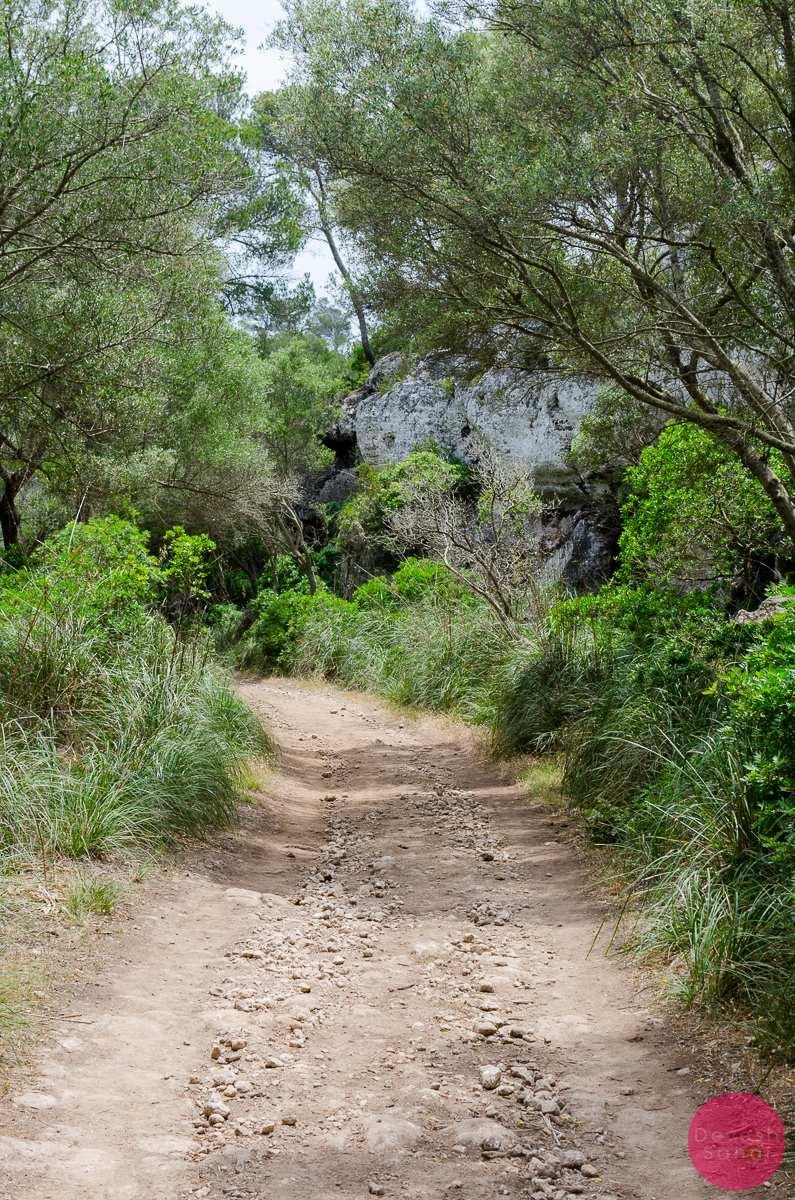 Camí de Cavalls path hike Menorca