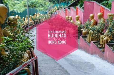 ten Thousand Buddhas Hong Kong Blog