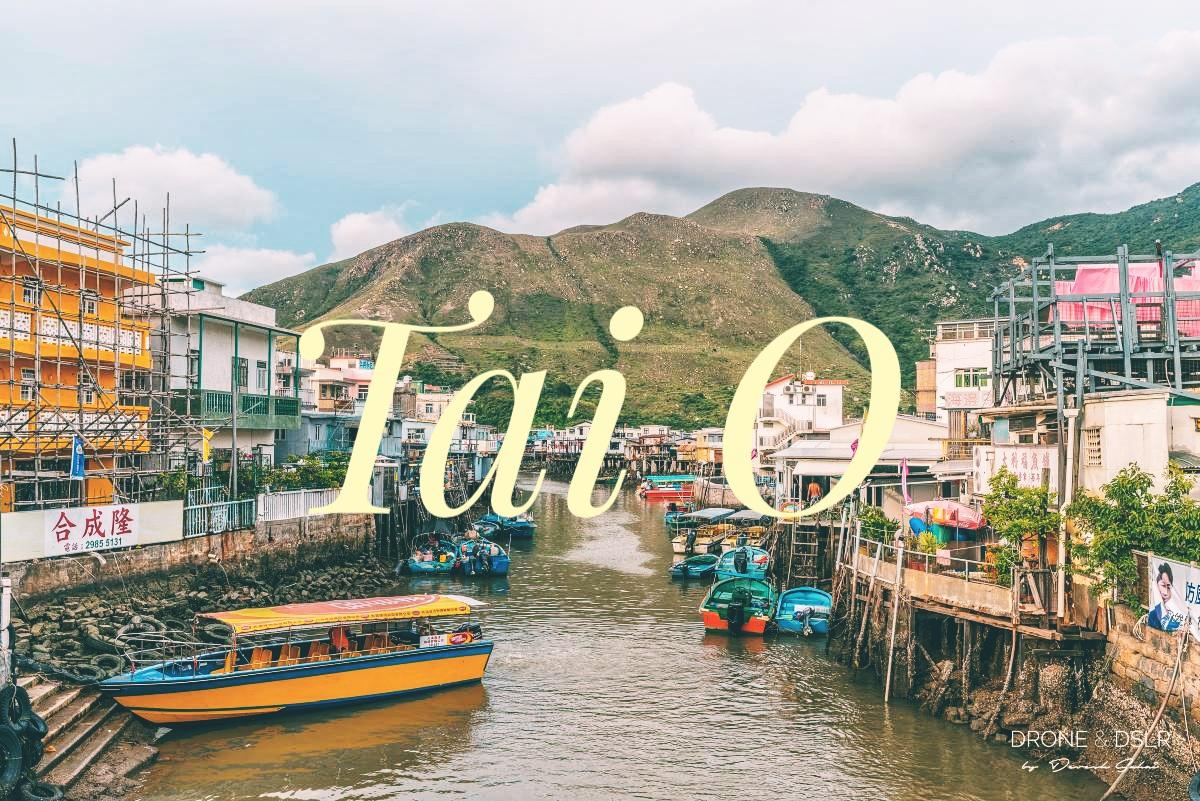 Guide To Tai O Fishing Village