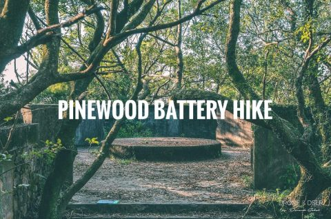 Pinewood Battery Hike Hong Kong Blog