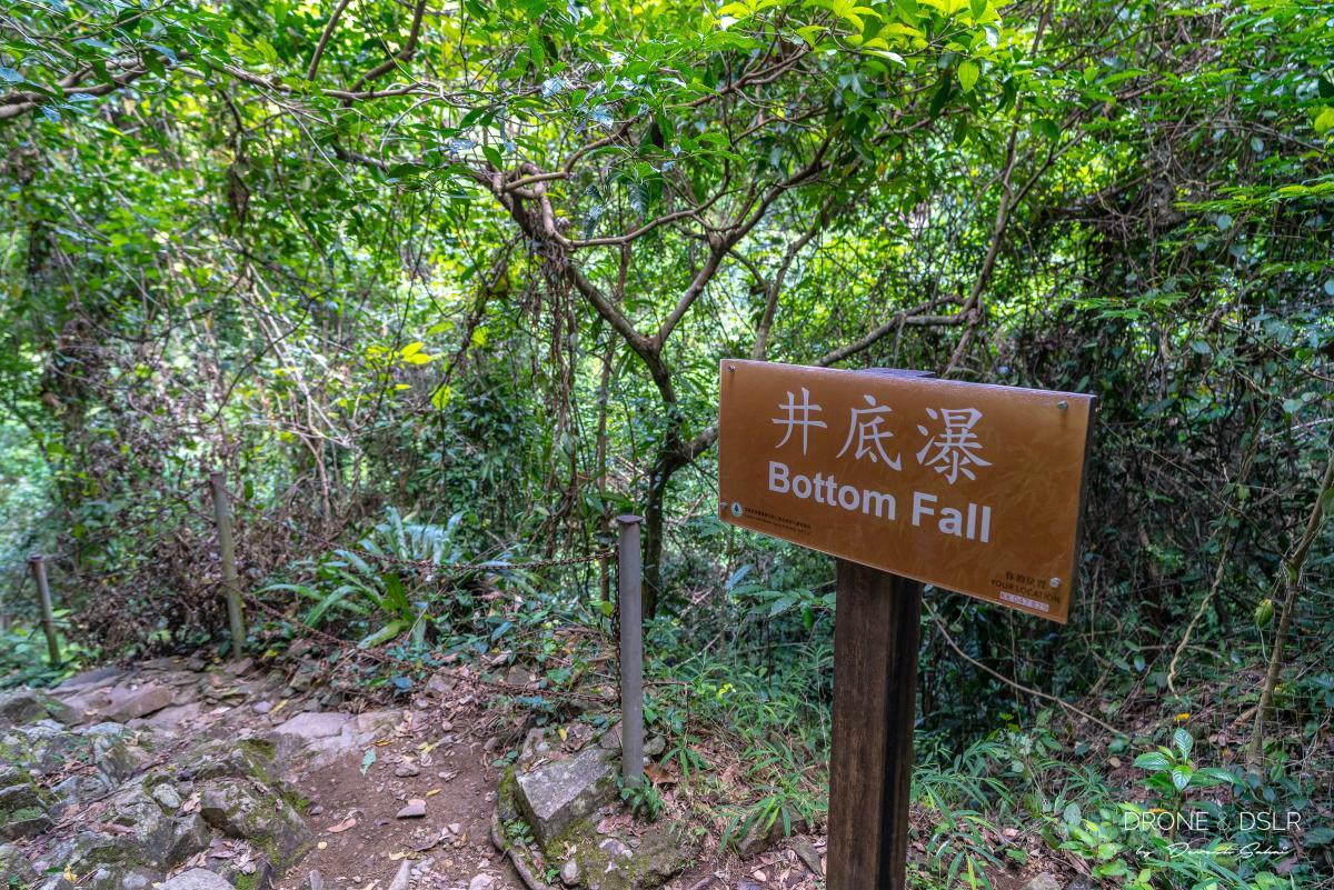 Bottom Fall