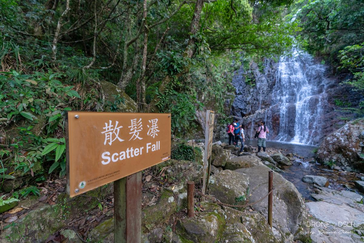 Scatter Fall