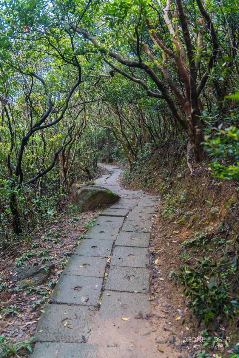 Treacherous Trail, Mount High West, Hong Kong