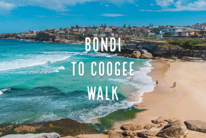 The Bondi to Coogee Walk Guide