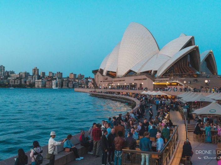 bars restaurants circular quay sydney opera house