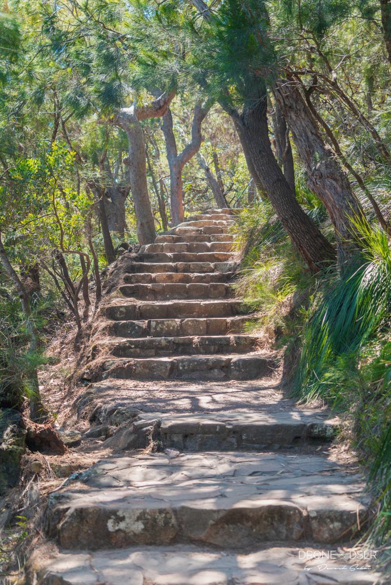 Tomaree Head Summit walk