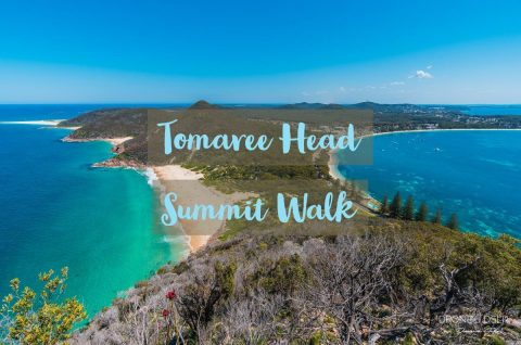 Tomaree Head Summit Walk Blog