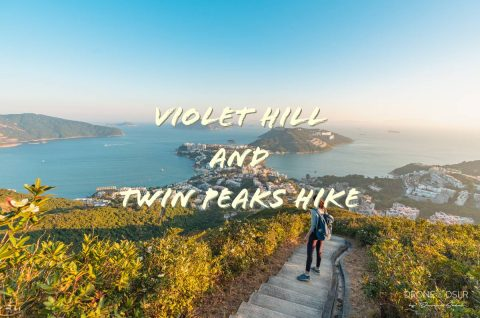 Violet Hill and Twin Peaks Hike Blog