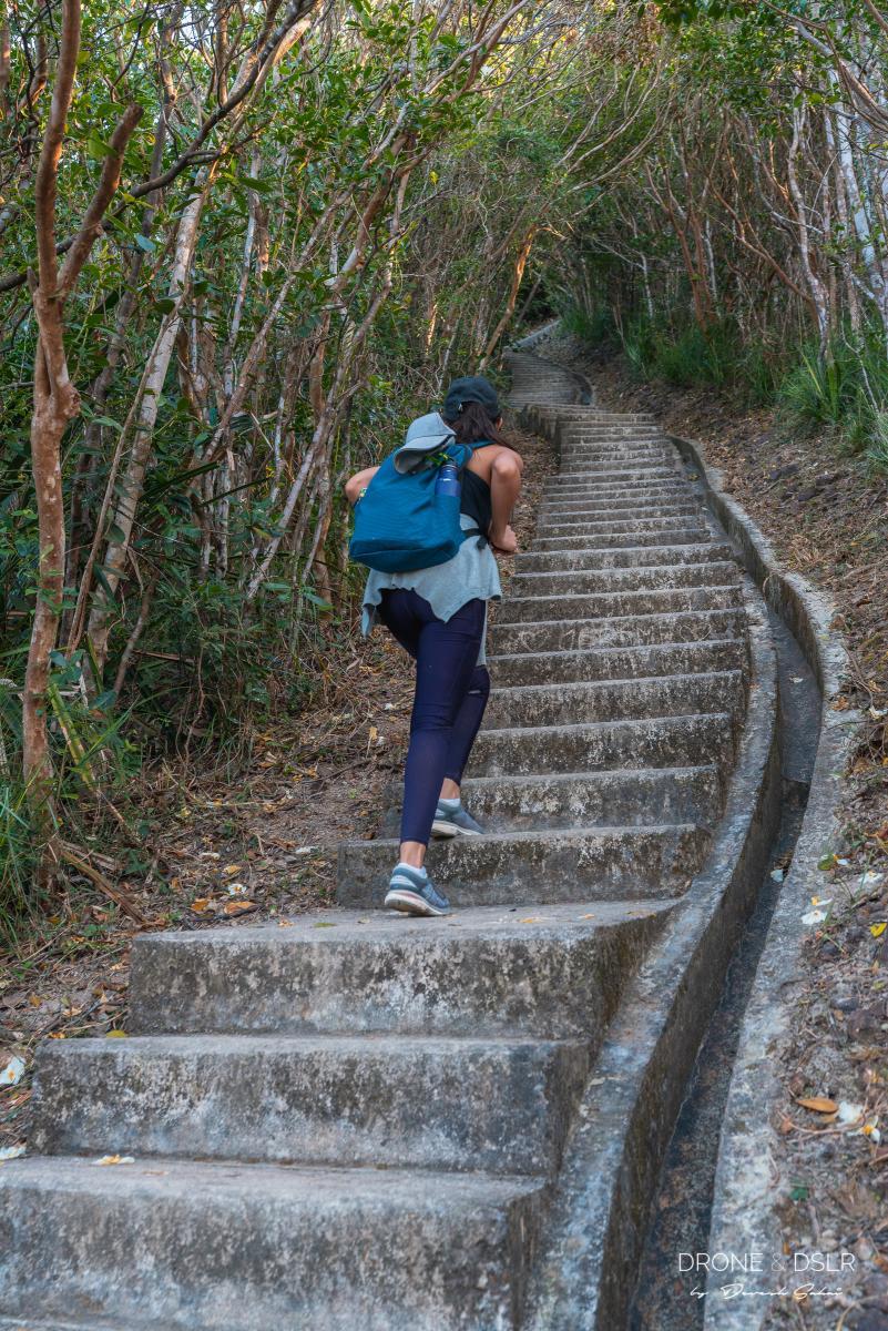 the twins hike hong kong