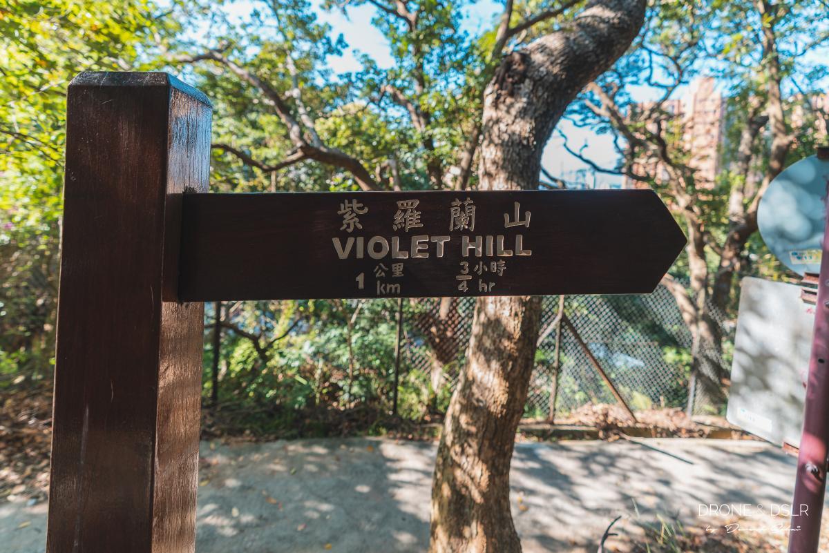 violet hill sign