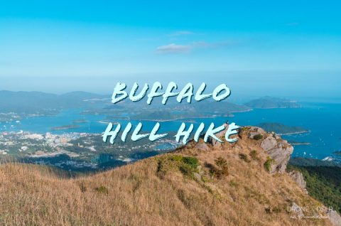 Buffalo Hill Hike, Hong Kong