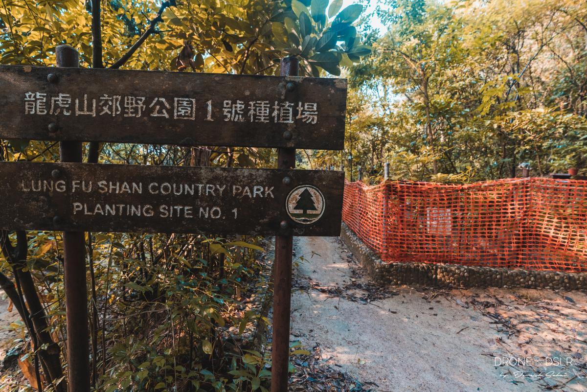 Lung Fu Shan Country Park Planting Site No. 1