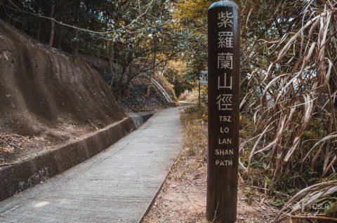Tsz Lo Lan Shan Path