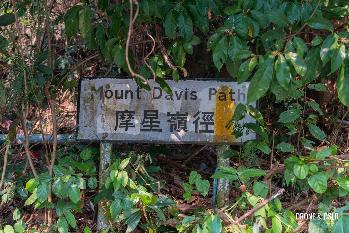 Mount Davis Path
